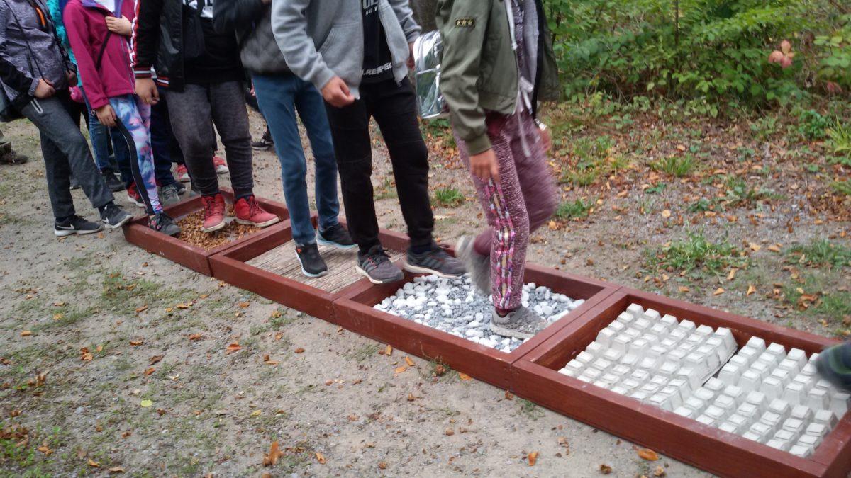 27. Essener Waldjugendspiele – Wir waren dabei!
